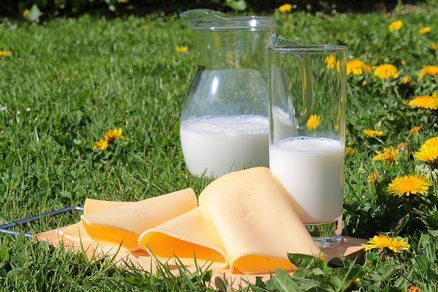 le calcium et la santé